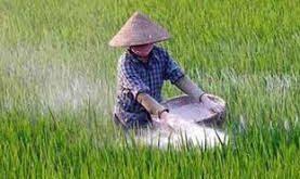 قیمت خرید ارزان کود اوره کشاورزی